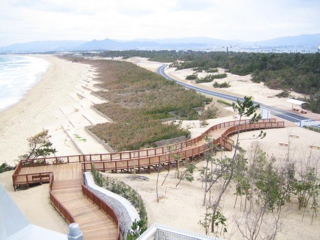 の 道 公園 中 海 海浜